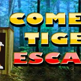 Ajaz Comedy Tiger Escape