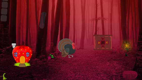 Wild Turkey Fairyland Escape