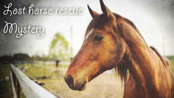 Lost Horse Rescue Mystery