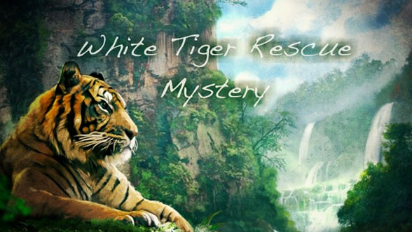 White Tiger Rescue Mystery